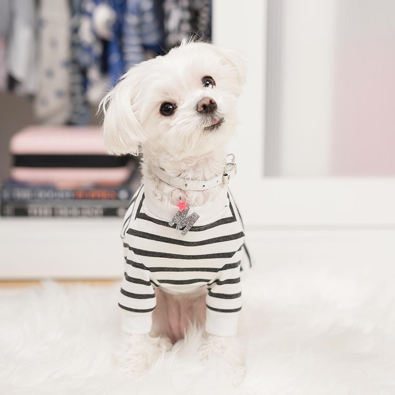 Mochi and the City - striped dog tshirt